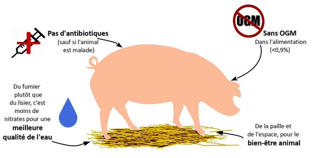 Cochon 02 schema porc durable