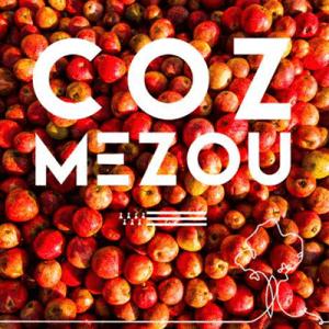 cozmezou_logo